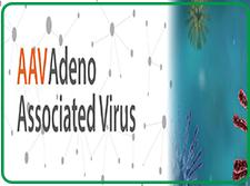 病毒类产品